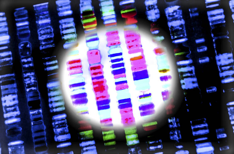 Could The First CRISPR Clinical Trial Could Begin in 2018?