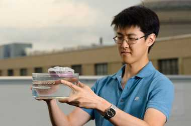 """engineering careers  """"Solar Sponge"""" offers a completely new approach to solar steam generation"""