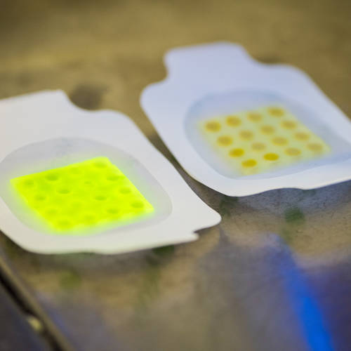 Meet the Smart Bandages that changes colour when they detect infections