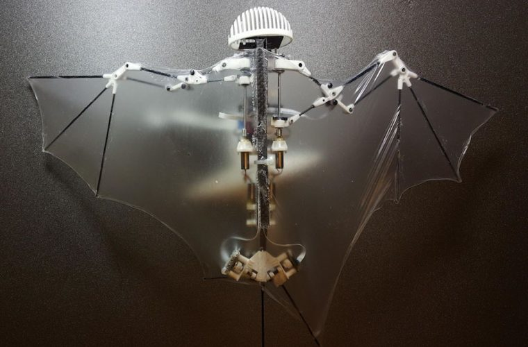 Engineers reveal Bat Bot – The Biomimetic flying soft Robot we deserve