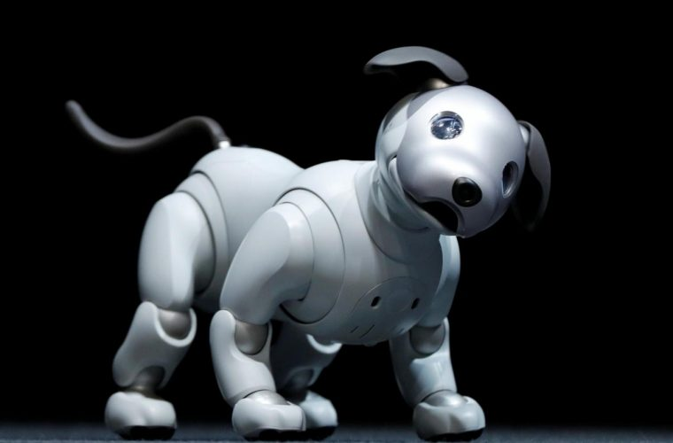 Sony revives Aibo robot dog after 11 year wait
