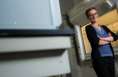 engineering careers  Minute silicon particles set to boost lithium ion batteries capacity by 10x