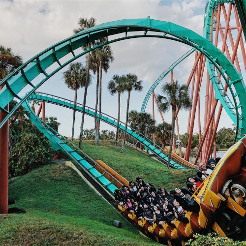 Infographic: How Roller Coasters Are Built