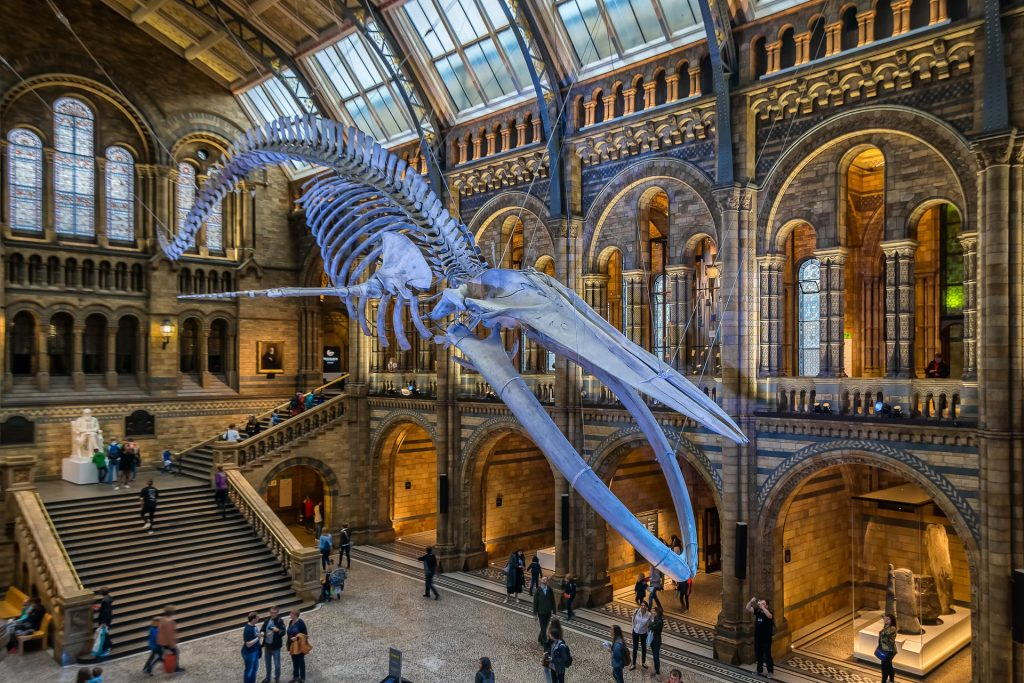 """Mixed Reality makes """"Night at the Museum"""" possible"""