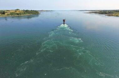 engineering careers  Meet the Engineers using drones to track the feeding habits of seabirds