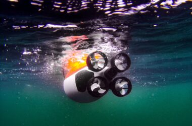 engineering careers  Quadroins – meet the artificial birds being used to study the Ocean