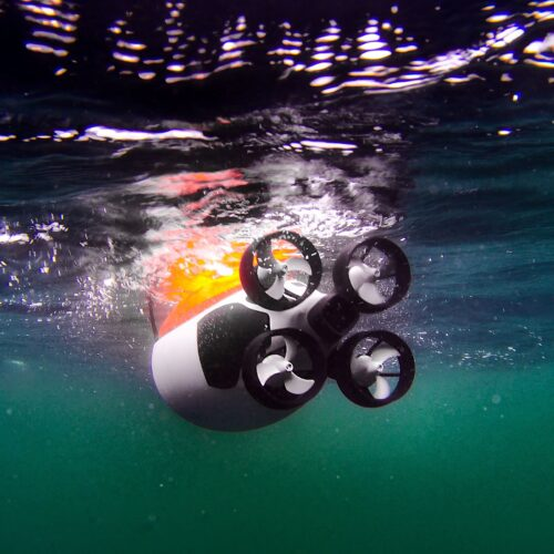 Quadroins - meet the artificial birds being used to study the Ocean