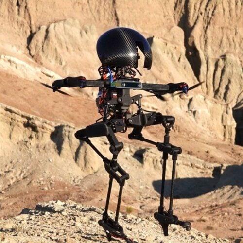 Meet LEONARDO - a bipedal robot who can ride a skateboard and walk a tightrope